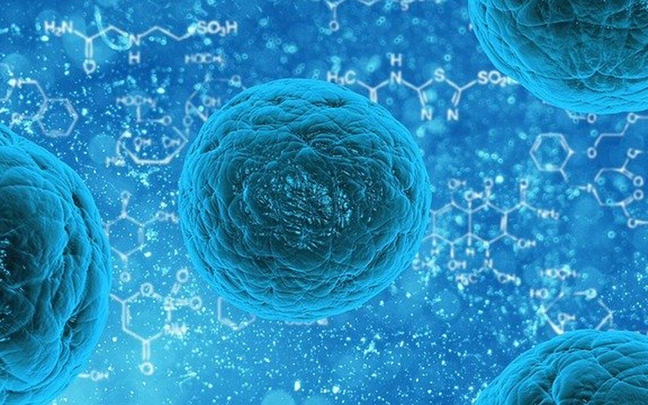 Imunitet: Kolika je uloga T-ćelija u borbi protiv korone?