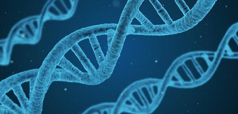 Još jedan delimično uspešan tretman Side korišćenjem CRISPR-a